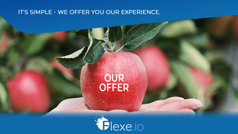 Flexe.io marketing services - what do we offer